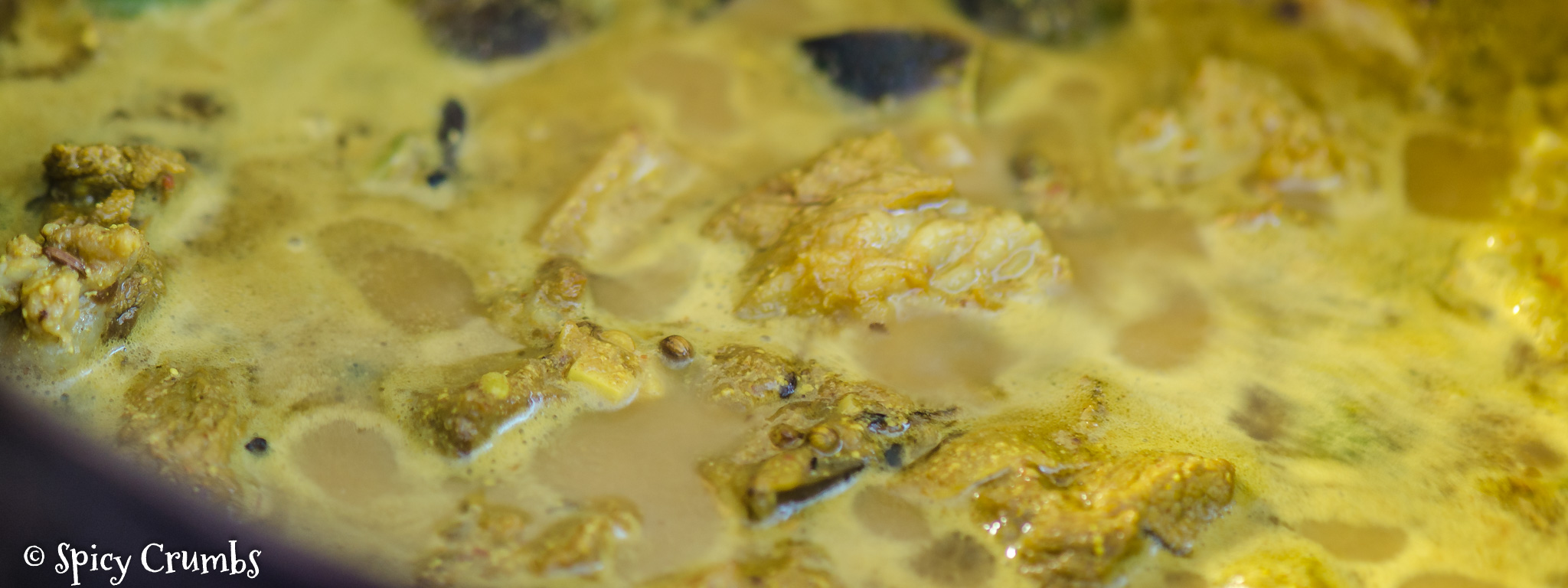 jehněčí curry